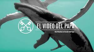 EN SEPTIEMBRE El PAPA PIDE ORACION POR LOS OCEANOS